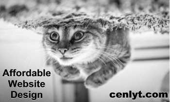 CENLYT Productions-ms designs Affordable Website Design